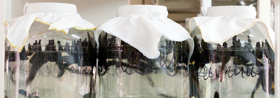 Лечение по методу профессора  Крашенюка А. И. Используя малые дозы пиявок в течение  определенного времени  удается добиться выраженного улучшения состояния здоровья пациентов. ...